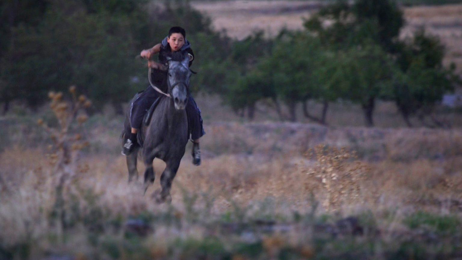 Hestefeber